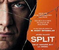 split-poster