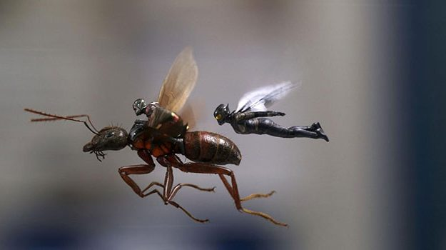 ant-man-and-the-wasp-review