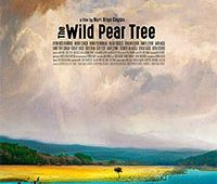 the-wild-pear-tree-poster
